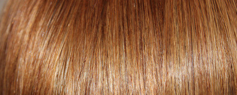 Full Head Human Clip-In Chestnut Brown