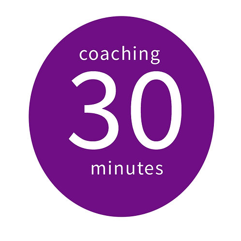 30 Minute One-on-One Business Success Coaching