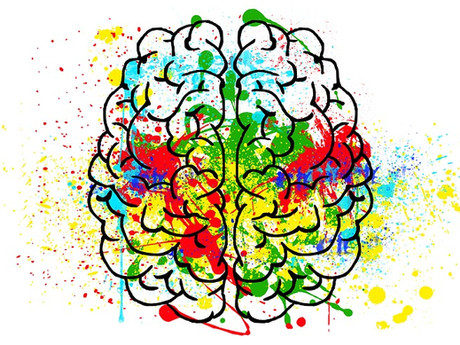 The Gifted Brain Revealed Unraveling the Neuroscience of the Bright Experience