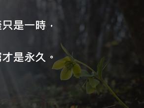 【#希望語錄 : 10 - 破產只是一時】