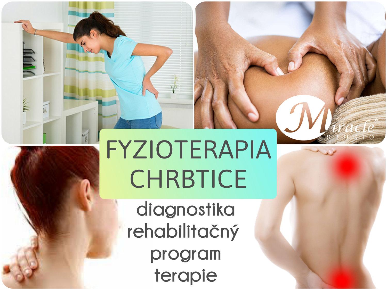 FYZIOTERAPIA CHRBTICE