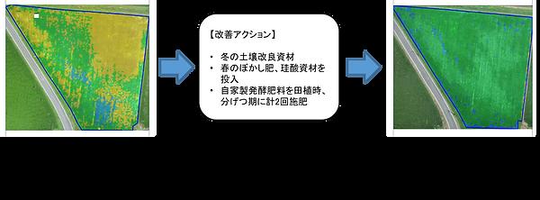 djagri_jirei.png