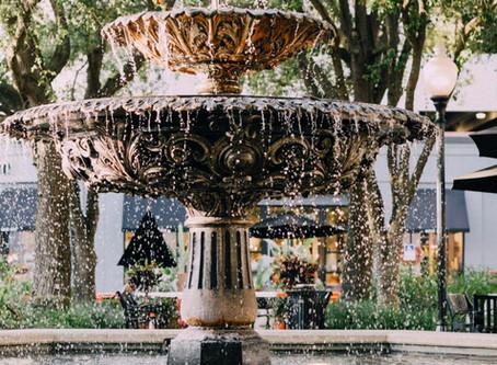 Best Neighborhoods in Tampa