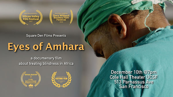 Eyes of Amhara UCSF event with laurels04