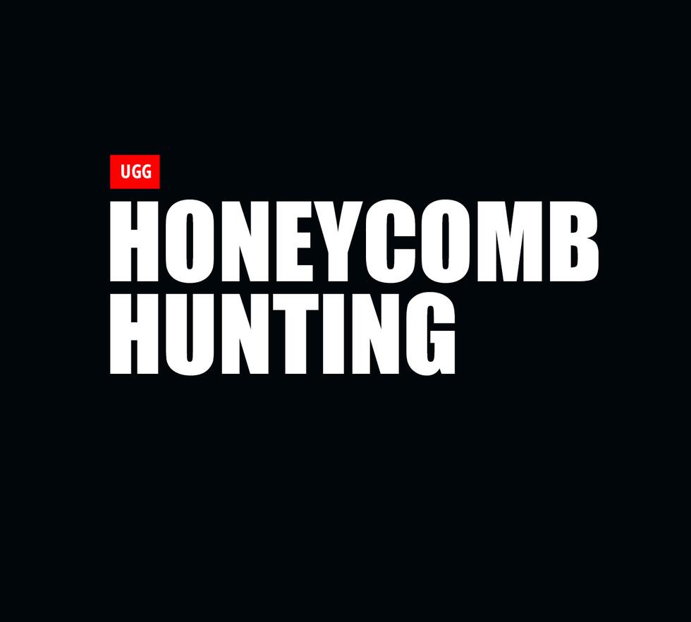 Honey Comb Hunting  copy.jpg