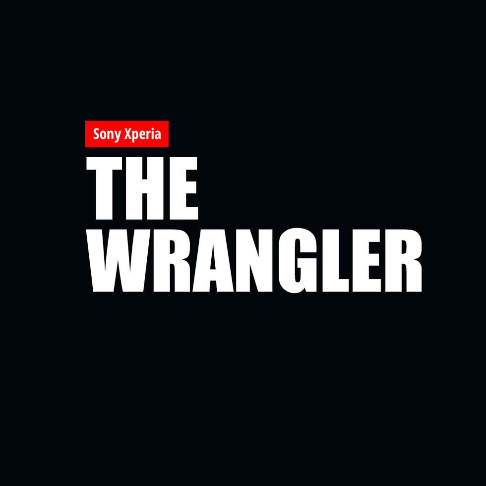 The Wrangler copy.jpg