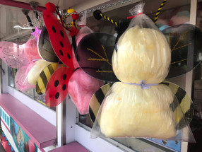 Bugs and Fairy Cotton Candy