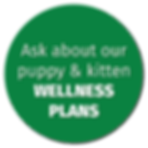 Bertrand Drive Animal Hospital Puppy & Kitten Wellness Plans
