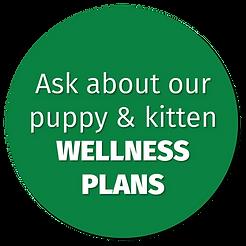Bertrand Drive Animal Hospital Puppy & Kitten Wellness Plans