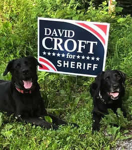 croftdogs.jpg
