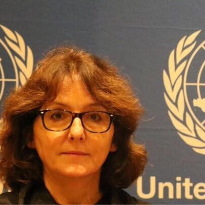 Relatora Especial de Naciones Unidas para la violencia contra la mujer, Dubravka Šimonović