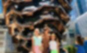 IMG_2564[1]_edited.jpg
