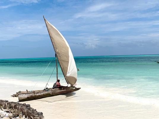 Zanzibar - Jungel, paradisstrender og spennende historie