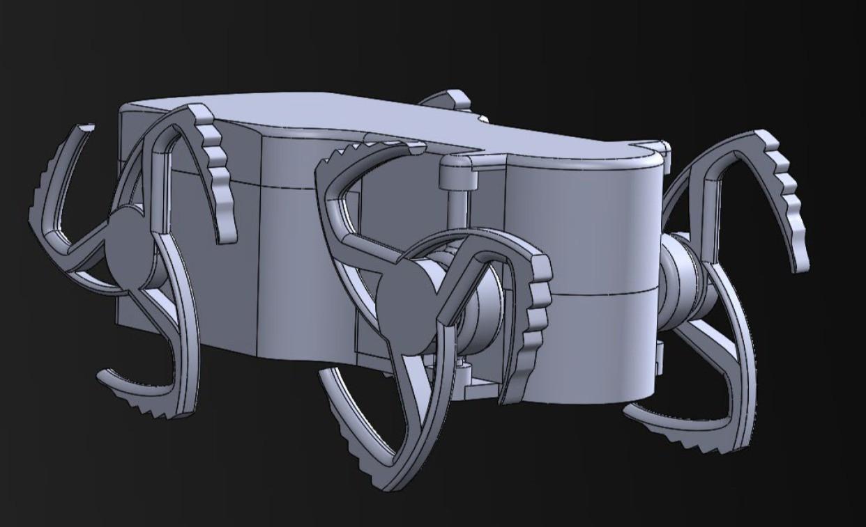 IIRR final model