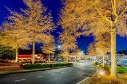 Golden Color Change Lighting West Cobb
