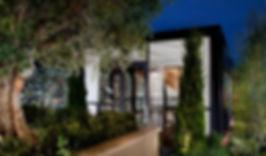 Ultra Modern entry olive trees night .jpg