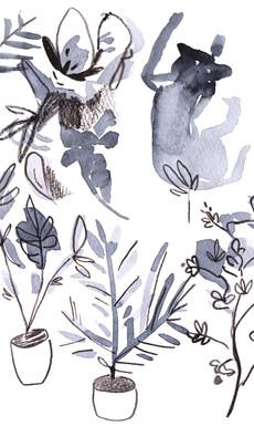 printa sketchbook 4.jpg