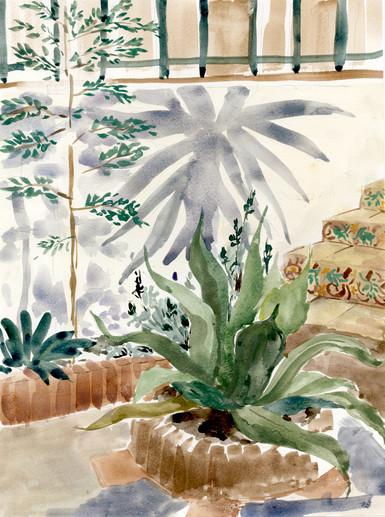 garden 43431.jpg