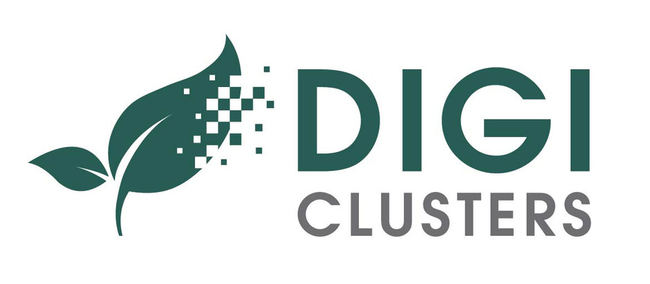 DIGICLUSTERS