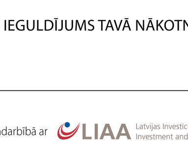 Support for Latvian IT solutions export