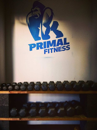 Primal fitness weights room 5