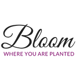 600x600 Transparent Bk_BloomLogo_Wix .pn