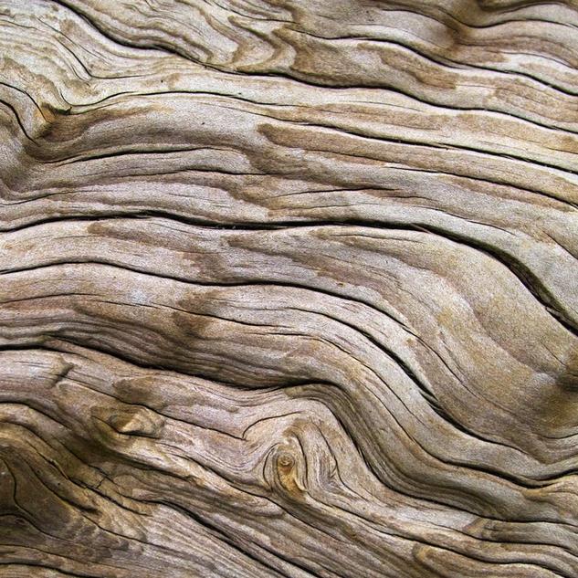 Bruin, kleur van eenvoud en evenwicht