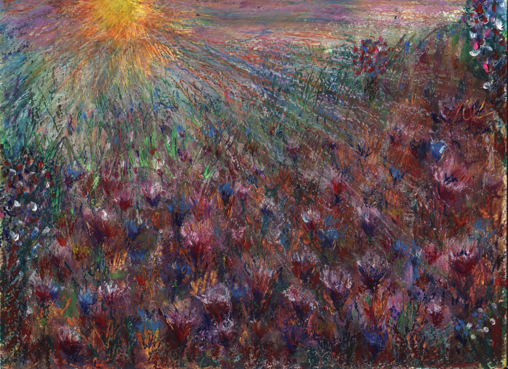 Magic Field of Sunset, oil pastel