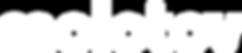 molotov logo blanco.png
