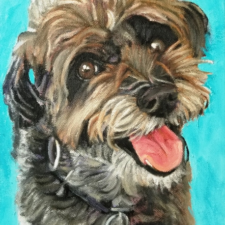 Commissioned pet portrait of Lulu the Schnoodle