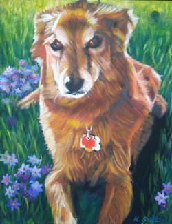 Custom Pet Portrait by Karen Seltzer