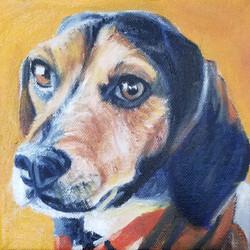 Pet Portrait of Barney, the beagle