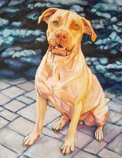 Reina, TOP DOG Mutt Strut