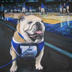 Butler Blue Bulldog