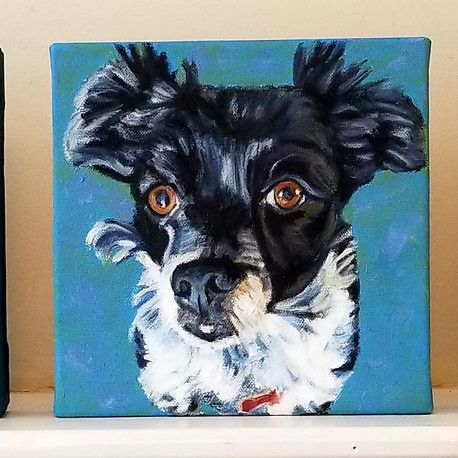 5 Pet Portraits Painted for Sami