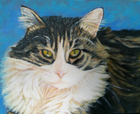 Custom cat portrait by Karen Seltzer
