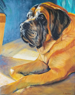 Butter, the Mastiff