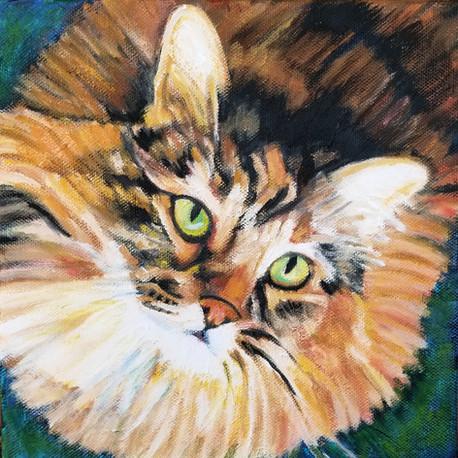 Lark's Pet Portrait