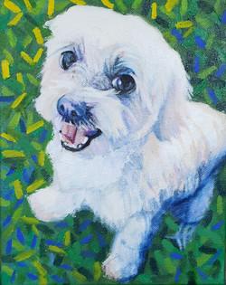 """Max 8"""" x 10"""" pet portrait"""