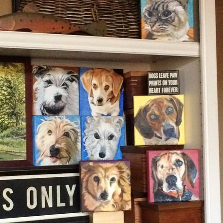 Allison's Pet Portraits