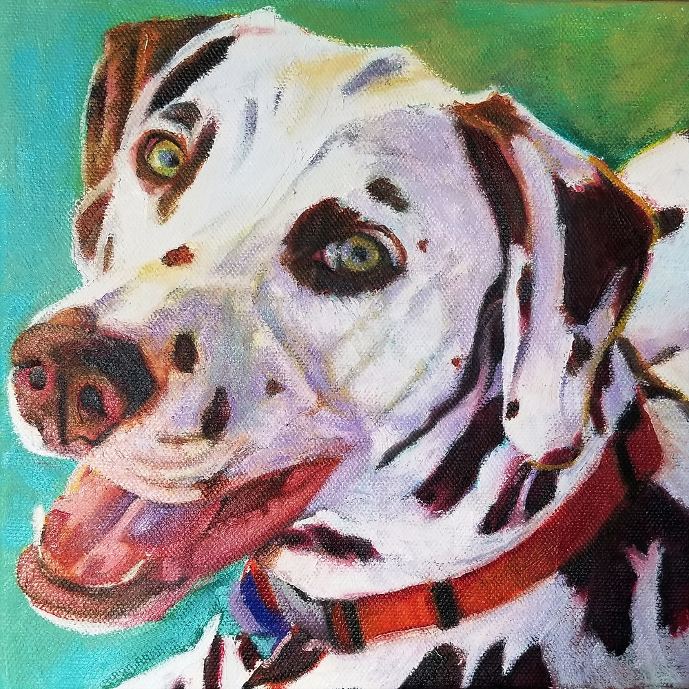 8 x 8 oil on canvas. Dalmation