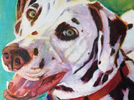 Custom portrait of Hamilton, the Dalmation