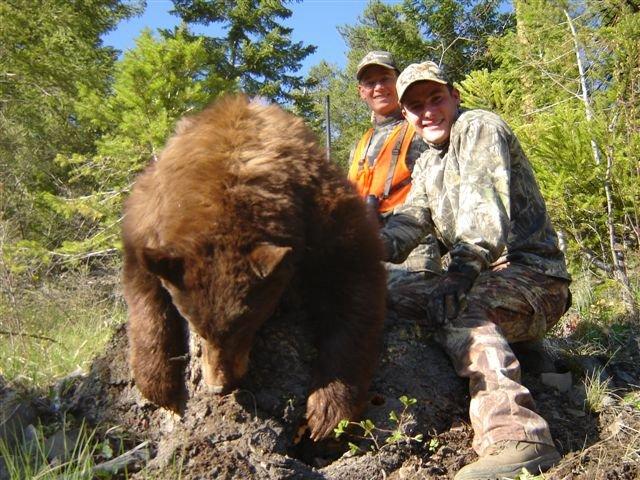 bear1_wto