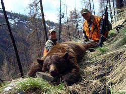 bear_hunts_montana_121