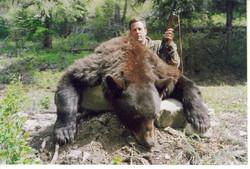 bear_wto2