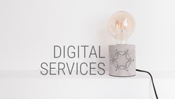 CHS Landing Page 4 - Digital Services (Comin