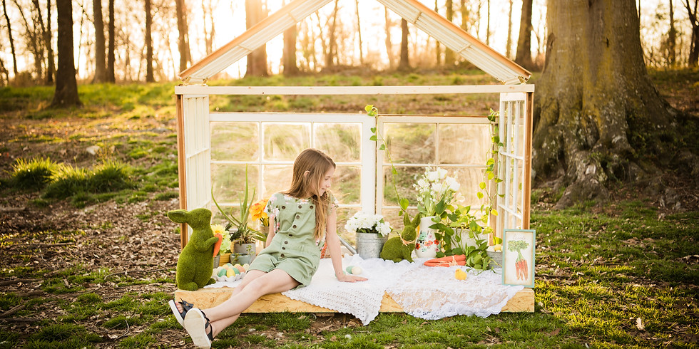 Spring Mini Sessions With Baby Chicks