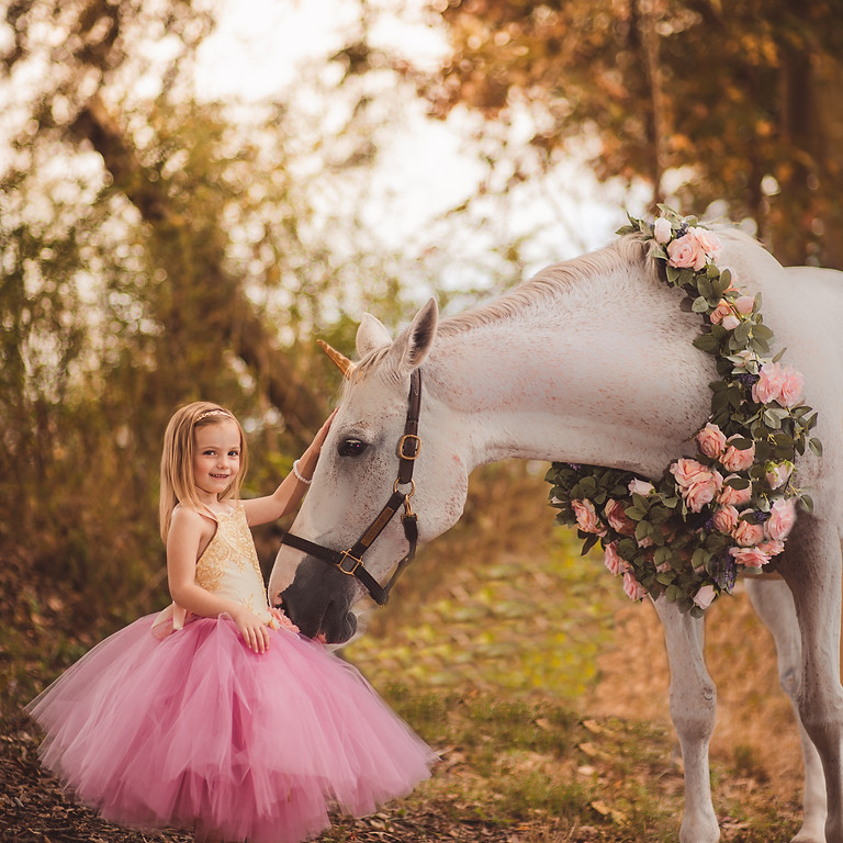 Unicorn Mini Sessions