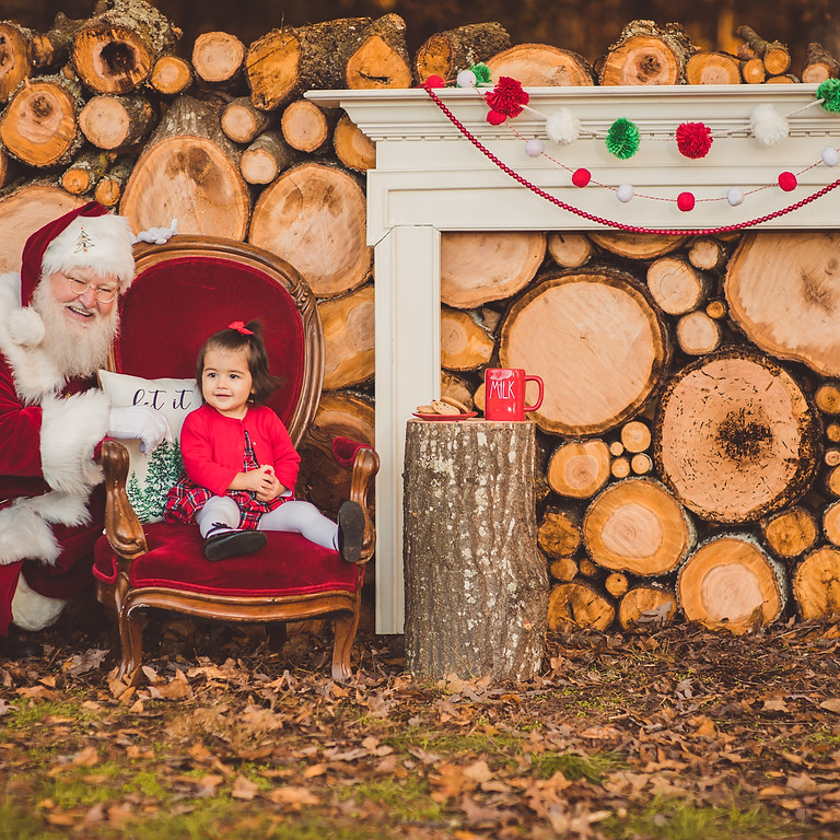 Log Wall Christmas Mini Sessions (Nov 13)