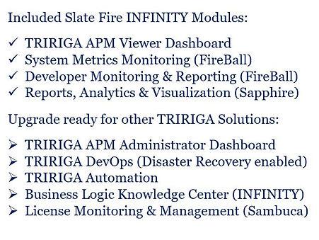 TRIRIGA APM viewer details.JPG